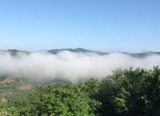 山西安泽:坚守绿水青山 生态发展安泽