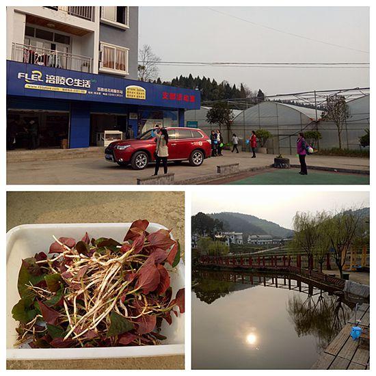 重庆涪陵:桂花苑生态农庄