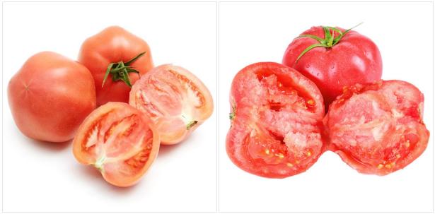 西红柿为何越来越没有味道? 听听上膳源一线生产人员怎么说